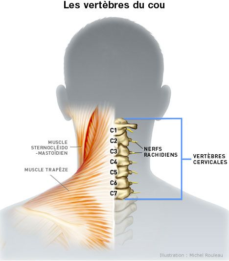 Cervicalgie / Névralgie cervicale:  6 questions fréquentes lors d'un mal de cou - http://chiropratiquesillery.ca/cervicalgie-nevralgie-cervicale-6-questions-frequentes-lors-dun-mal-de-cou/