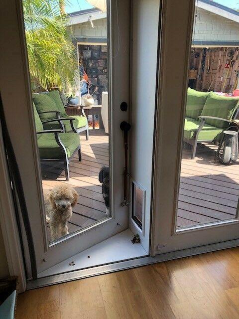 Pet Door For French Doors In Or Out Pet Products Large Ebay Pet Door Large Dog Door Pet Screen Door