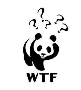 WWF - WTF: