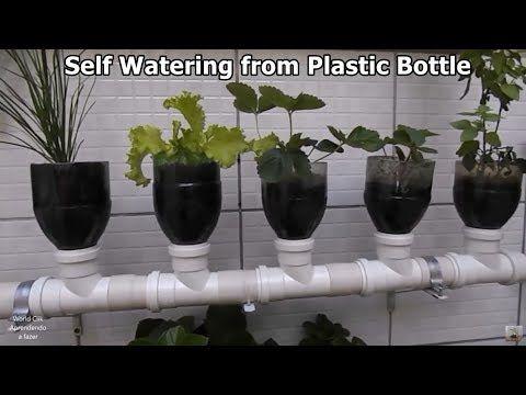 How To Make Vertical Garden Self Watering From Plastic Bottle And Tube P In 2020 Self Watering Vertical Garden Diy Bottle Garden