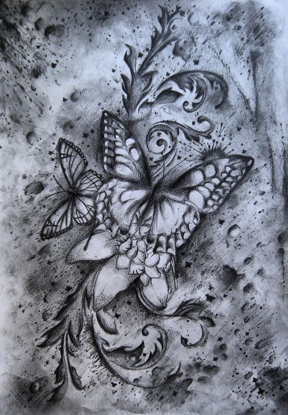cool butterfly drawings butterfly drawing by