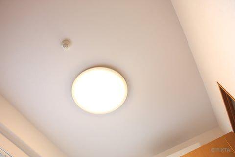 天井のカビを掃除 安全な取り方は カビキラーは使える カビ