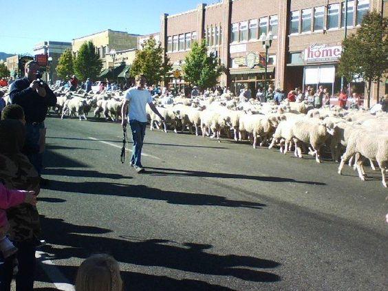 cedar city utah memorial day parade