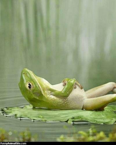 Just chillin'...