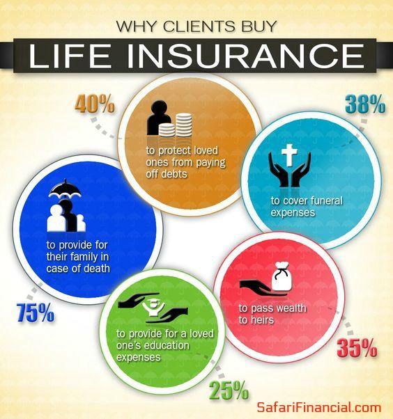 Safari Financial Life Insurance Marketing Life Insurance Facts