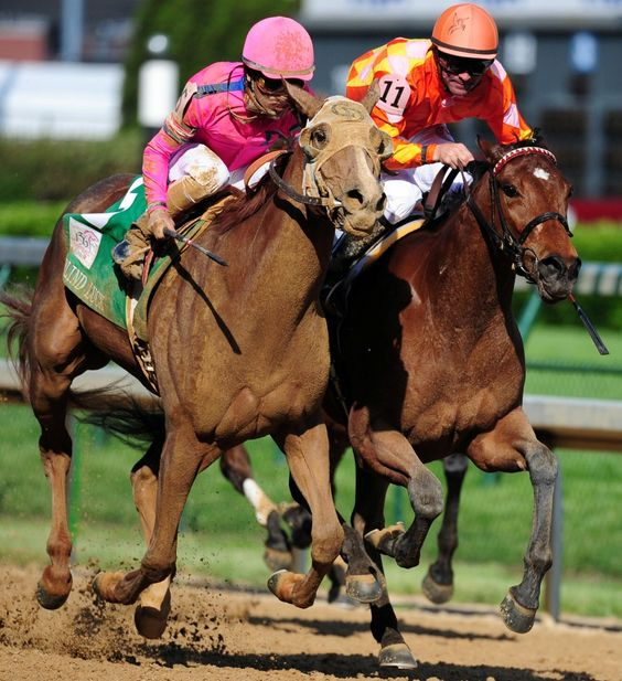 Racing silks~ a jockeys outfit symbolizing the colors of the horse owners