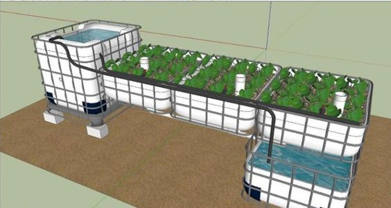Aquaponics sump system google search aquaponics for Hydroponic raft system design
