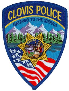 This is a cool looking patch! #police patches #police #patches
