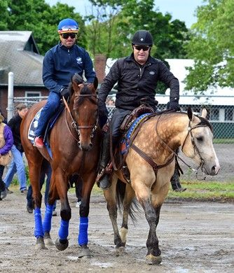 Belmont Stakes Week 2015 | Slideshow | BloodHorse.com