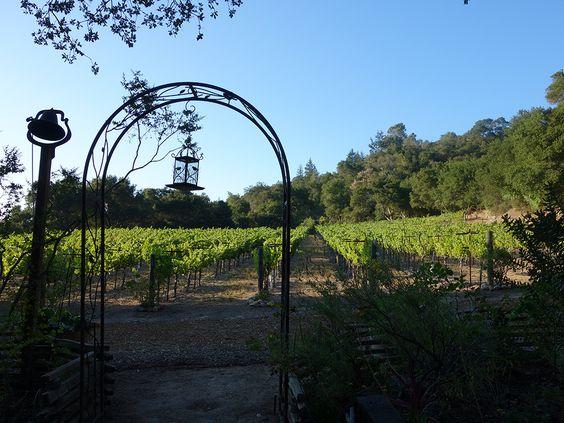 VARNER WINES - CALIFORNIA