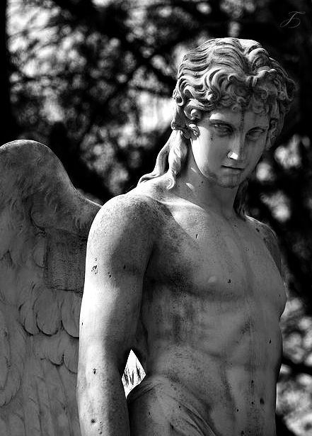 Regilla ⚜ tales-of-the-night-whisperer: Angel Man © Symboter Edit: Tales of the Night Whisperer Please do not remove credits