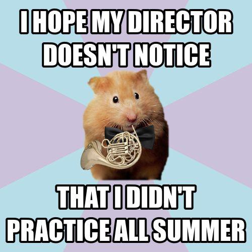 Hornist Hamster