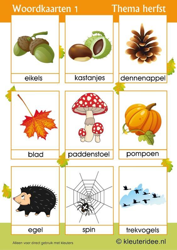 Woordkaarten 1 voor kleuters, thema herfst, juf Petra van kleuteridee,  free preschool printable.