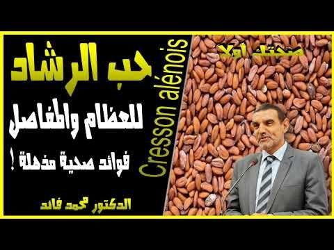 فوائد حب الرشاد وأضراره و كيفية استخدام حب الرشاد الدكتور محمد الفايد 2020 Youtube Youtube Movie Posters Playbill