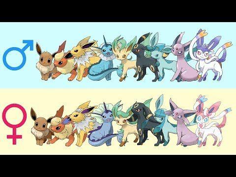 All Eeveelutions Gender Difference Fanart Youtube Eeveelutions Fantasy Creatures Art All Eeveelutions