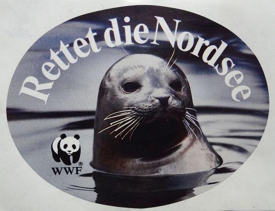 Aufkleber WWF Rettet die Nordsee Robbe Seehund Umweltschutz 80er Jahre Sticker