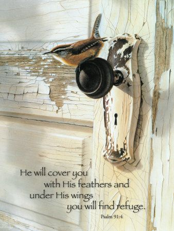 He will cover you...
