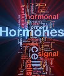 ¿¿¿¿¿son adecuadas las hormonas?????