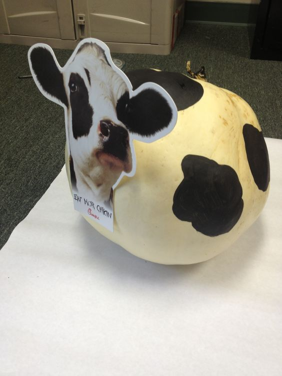 White pumpkin painted like the chick fil a cow cfa for Painting and decorating advertising ideas