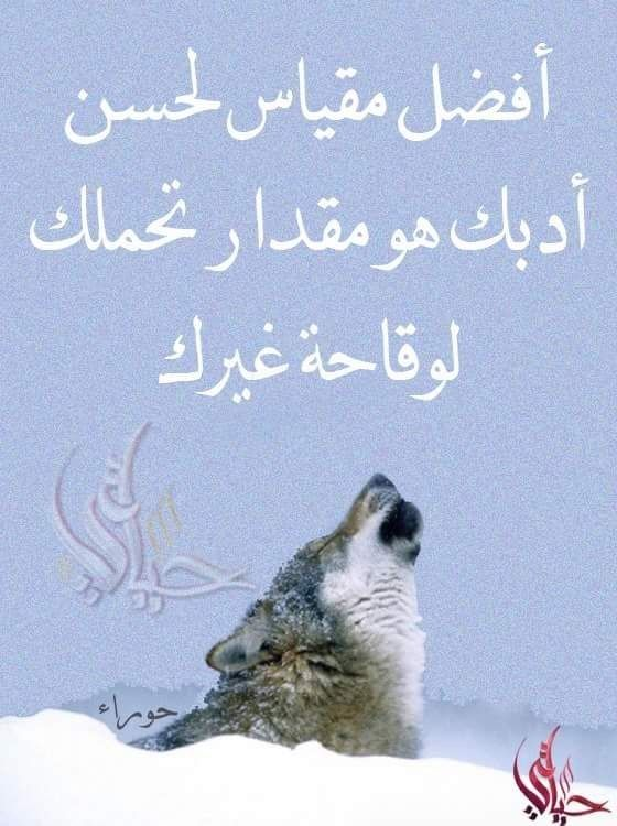 Pin By Dimous Gogo On دين ودنيا In My Feelings Self Motivation Qoutes