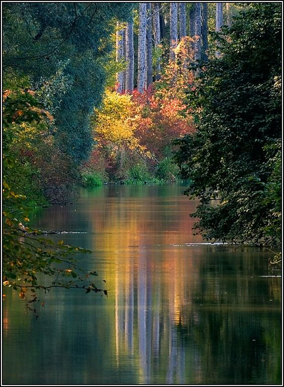 Fall Foliage Of Lake George New York State I Want To Go See This Place One Day Please Check