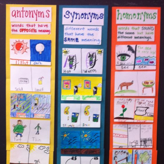 Antonyms, synonyms, & homonyms chart. Students come up with their own examples to help them learn the difference between the three.