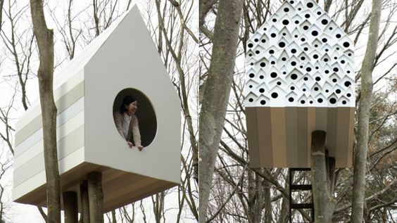 A Treehouse Tenement For 76 Birds and One Human