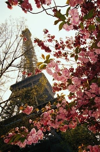 Springtime in Paris, France...Can't wait to go Jules!  Were going to have so much fun!!!: