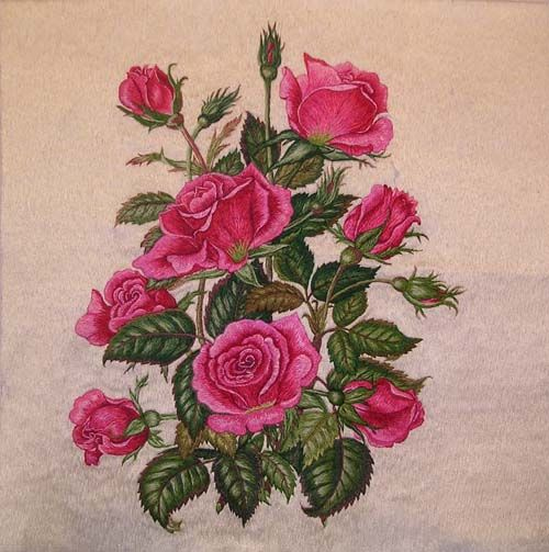 How To Embroider Roses - Free Embroidery Patterns Mbroider.net How To Embroider A Sweetheart ...