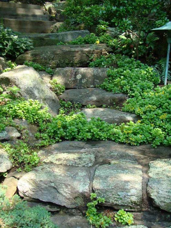 Escalier de jardin librement conçu en pierre brut dans le jardin sur pente: