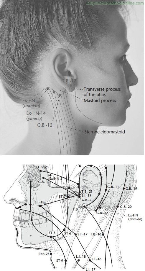 Ex-HN Peaceful Sleep ANMIAN - Acupuncture Points