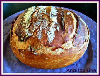 Un pain bien craquant cuit dans l'ultra pro tupperware ! > 300g eau > 500g farine (un mélange farine de blé et farine campagne pour moi) > 1 sachet levure boulangère sèche (ou 15g levure fraîche) > 2 cuilères à café rases de sel Mettre l'eau et la levure...