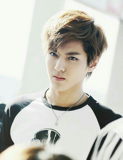 Handsome Guy Profiles Kris Exo Kris Wu Exo