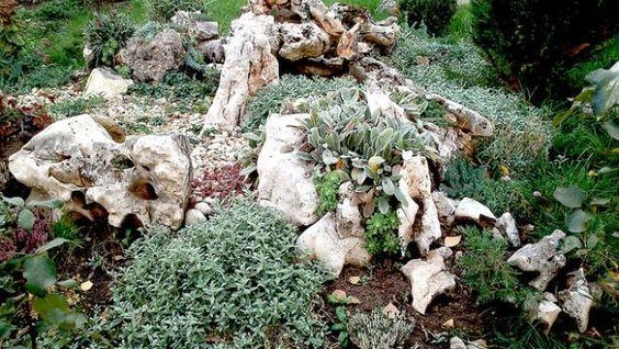 steingarten anlegen bodendecker natur look