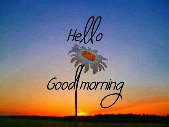 Hello Good Morning quotes quote sunrise morning good morning morning quotes good morning quotes sun flower