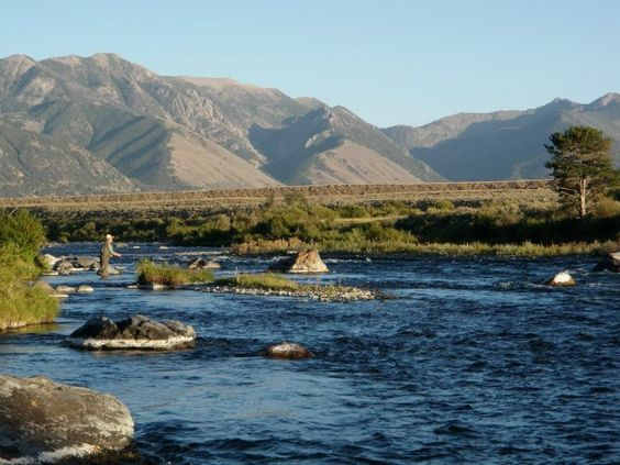 Fly fishing the madison river montana 09 08 12 if i 39 m for Madison river fly fishing
