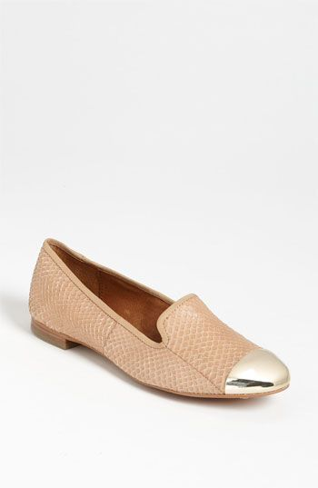 'Aster' Flat