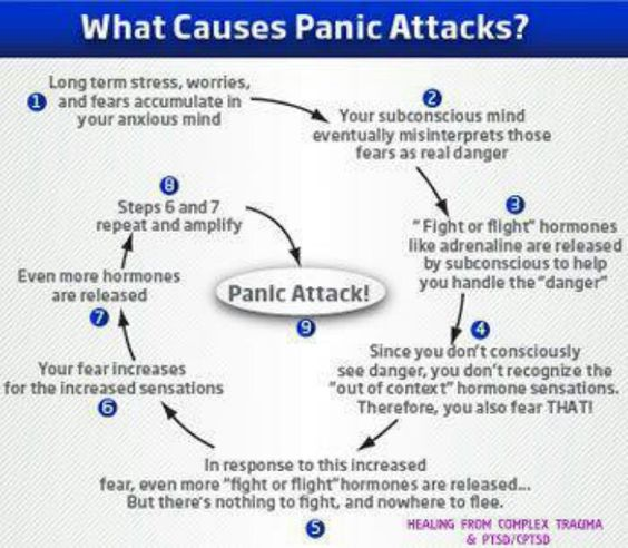"What Causes Panic Attacks? // OK, except: your subconscious mind isn't a physical organ capable of ""releasing"" stress hormones-your body does that.:"