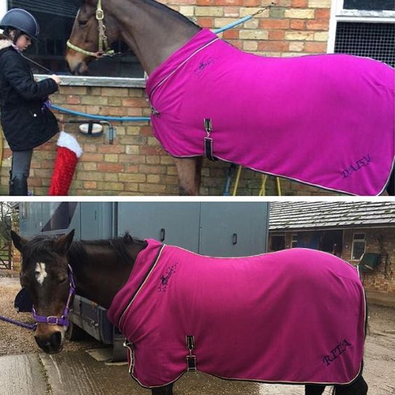 How gorgeous do @becca.everitt horses look?! She even had their names embroidered on the Maven Fleece Rugs!  http://bit.ly/1I4UtRR