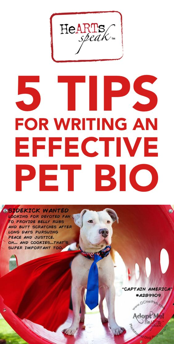Do you write for your local rescue group? Here are 5 tips for writing an effective pet bio from the HeARTs Speak blog.