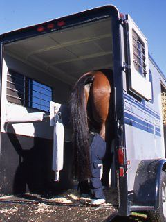 Instructor and trainer Ron Meredith explains how to train the scared horse to load into a trailer.