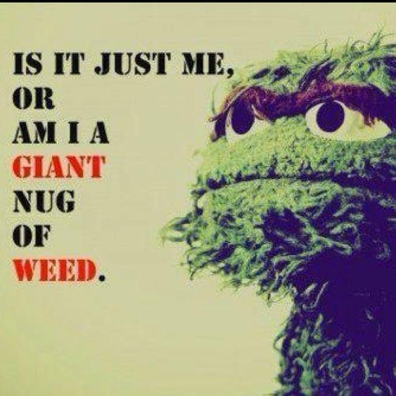 Oh Oscar..