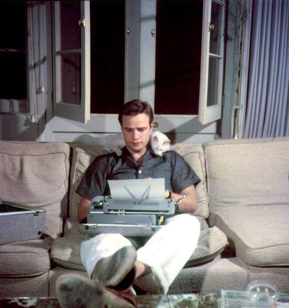 Marlon Brando typing with his cat in 1954. http://t.co/afzAKZHTTf http://t.co/nQ0Ko6OJWq http://t.co/e51qicajTh