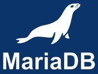 MariaDB Logo White on Blue Vertical