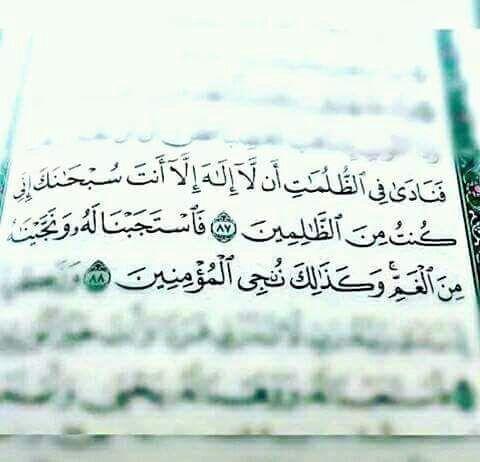 Desertrose لا إله إلا أنت سبحانك إني كنت من الظالمين Quran
