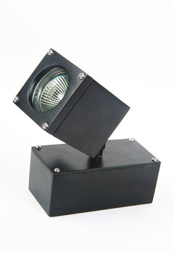 Stainless steel spot lamp with transformer,MR16 2*MAX50W, IP65. great pin!