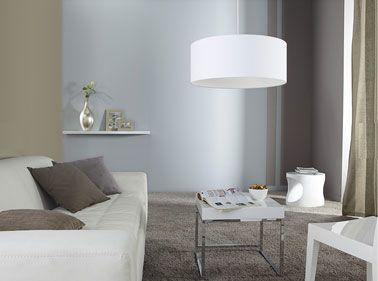 Couleur salon peinture taupe gris canape et luminaire - Peinture salon blanc et taupe ...