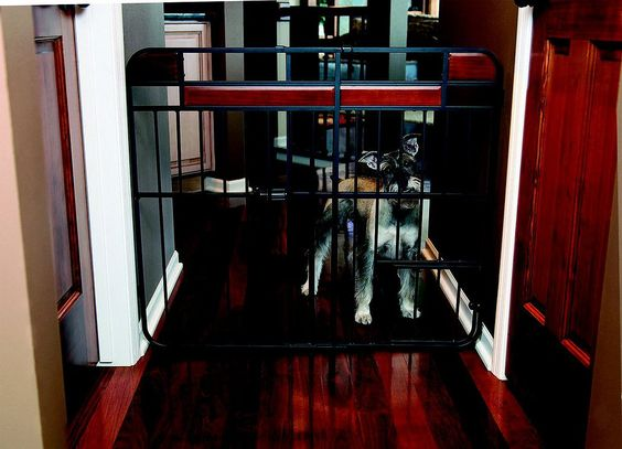 Carlson Pet Products Design Studio Expandable Gate with Pet Door, Extra tall