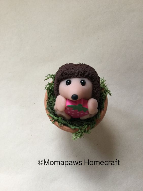 Hedgehog in flowerpot, Cheeky wild little hog Unique Handmade Ornament unusual OOAK Adopt a Garden buddy cute little animals by MomapawsHomecraft on Etsy