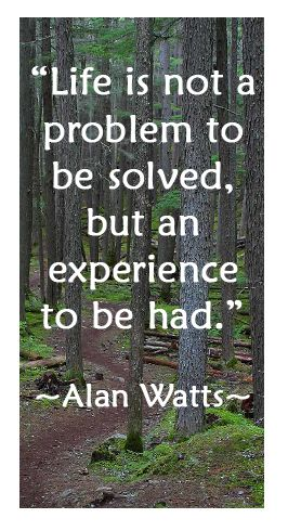 Life is not a problem to be solved, but an experience to be had.